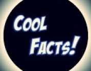 Cool Facts Official – Review