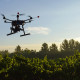 drone planting trees