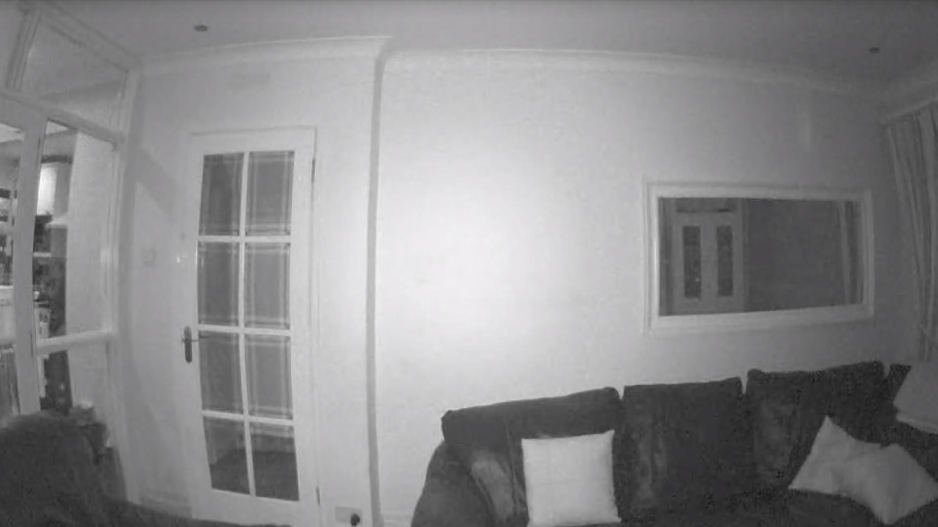 Piper Cam Capture - Night