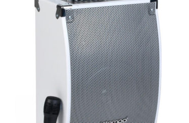 Intempo Tailgate Speaker Review