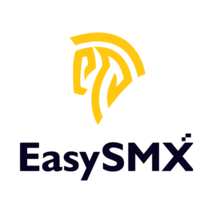 EasySMX Website