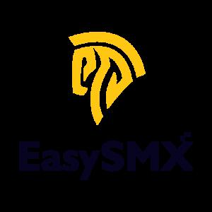 EasySMX Website