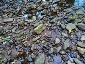 Huawei Mate 20 Lite Sample - Rocks