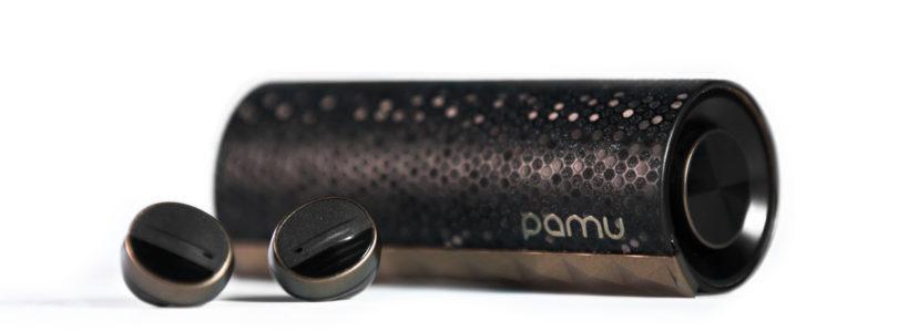 PaMu Scroll BT 5.0 Earphones Review